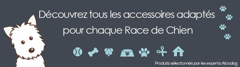 Bannière accessoires race de chien