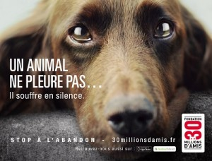 Campagne 2012 30 Million d'amis contre l'abandon d'animal de compagnie