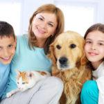 Garde chien en famille d'accueil