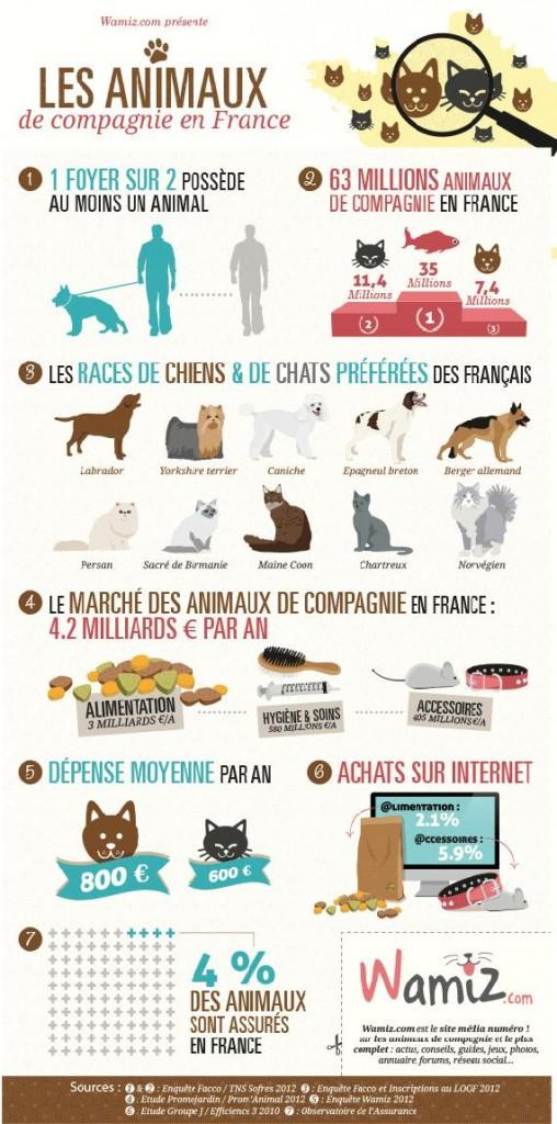 Infographie sur le marché des dépenses des animaux de compagnie en France