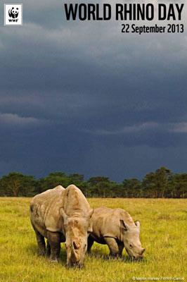 Journee mondiale des rhinoceros