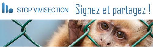 Pétition Stop Vivisection