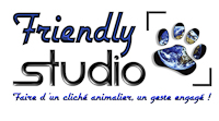 Friendly Studio logo