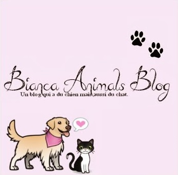blog bianca