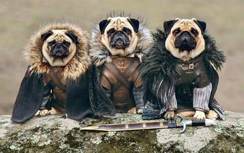 carlins de Westeros