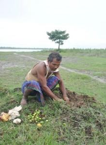 Un homme plante une forêt de ses mains