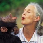 Institut Jane Goodall France