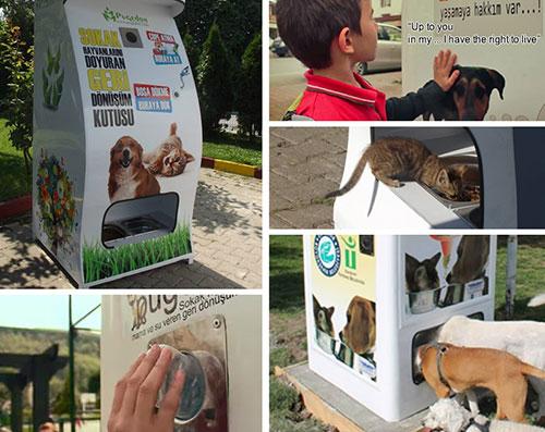 Distributeur Pugedon pour animaux errants