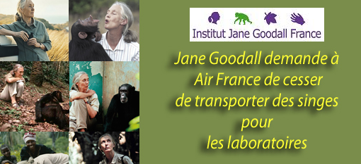 Stop au transport de singes par Air France