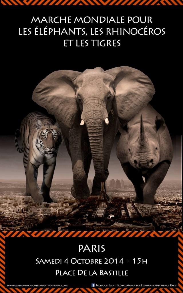 Affiche Marche pour les éléphants et les rhinocéros
