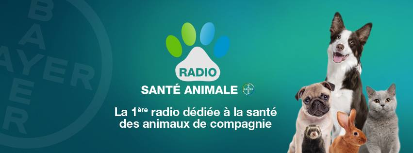 web radio sante animale