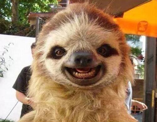 sourire paresseux