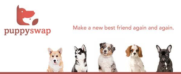 Campagne puppy swap