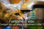 Fontaine à eau pour chat, une nouvelle façon de faire boire son chat