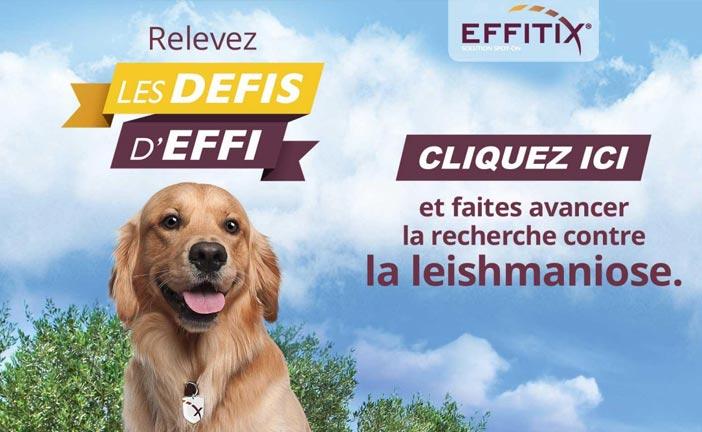 Campagne effitix