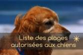 Liste des plages autorisées pour les chiens