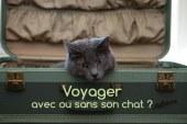 Les vacances, avec ou sans son chat ?
