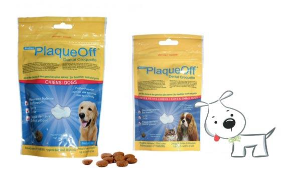 Complément hygiène dentiare pour chien