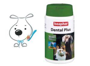 Dentifrice pour chien