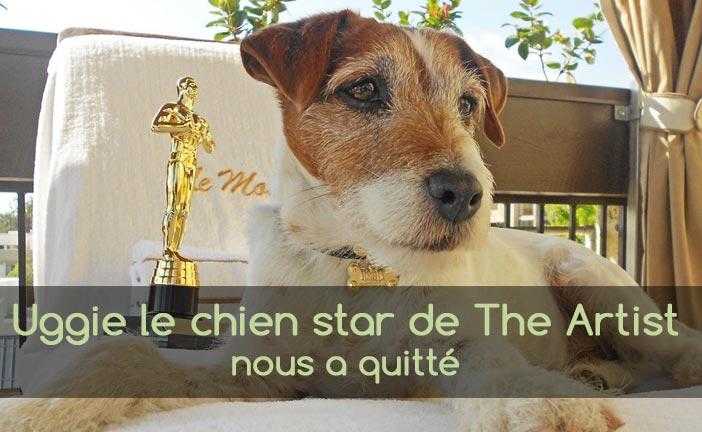 Uggie, le chien de the Artist est mort
