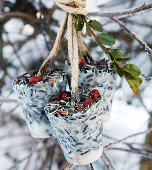 gateau de  graines pour oiseaux