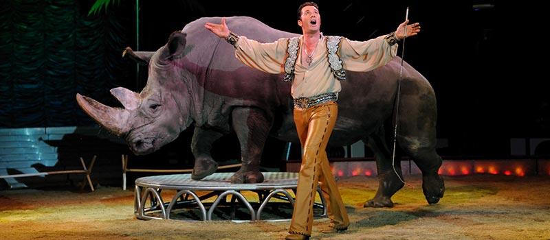 Maltraitance animale dans les cirques