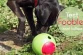 Foobler : test du nouveau jouet éducatif pour chien
