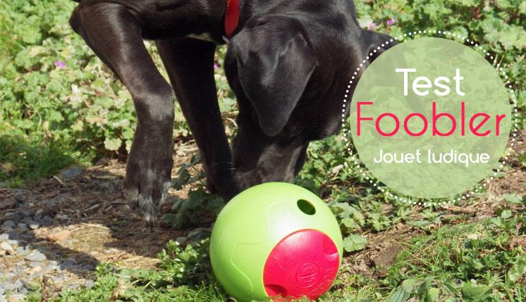 Foobler, jouet pour chien
