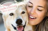 Devenir famille d'accueil pour animaux