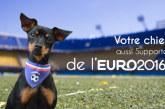 Laissez votre chien devenir supporter pour l'Euro 2016 !