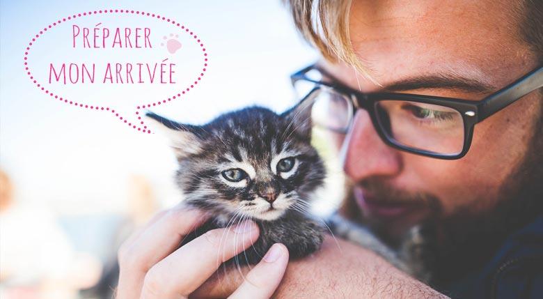 Accueillir un chaton à la maison
