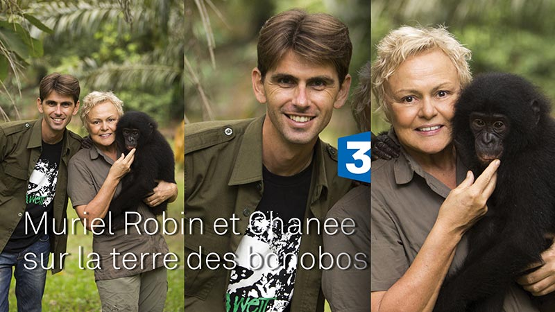 Sur la terre des bonobos