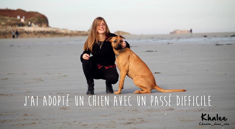 temoignage adoption chien refuge