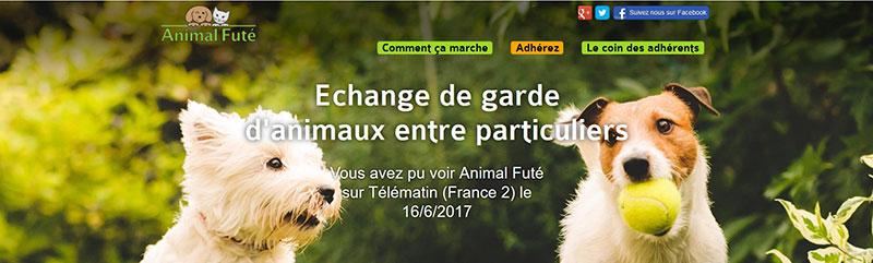 animalfute