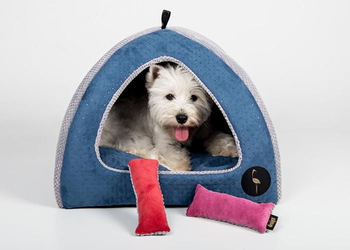 maison pour chien bleu
