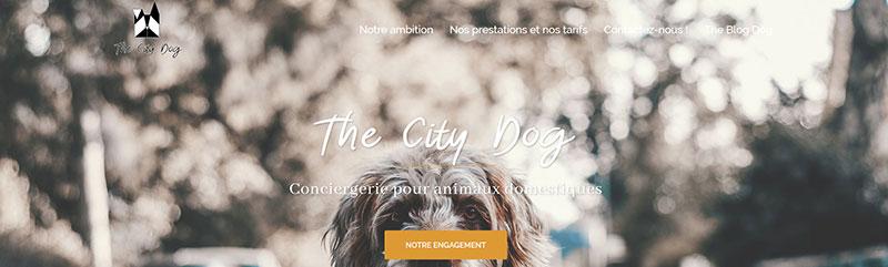 thecitydog
