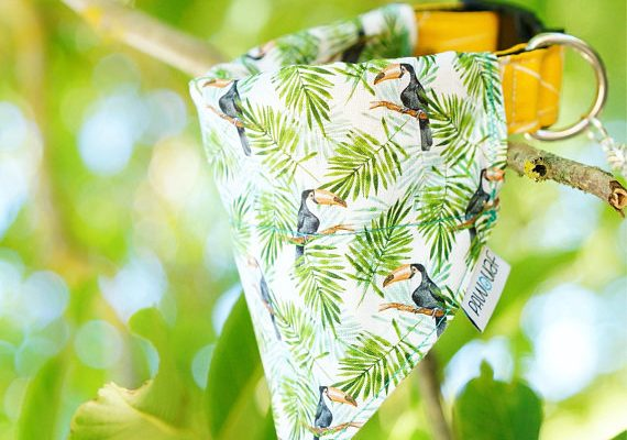bandana chien tropical