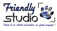 Friendly Studio logo