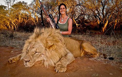 melissa branchman chasse lion