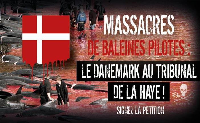Stoppon les massacres de dauphins
