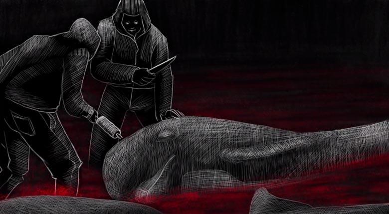 grindadrap massacre baleine