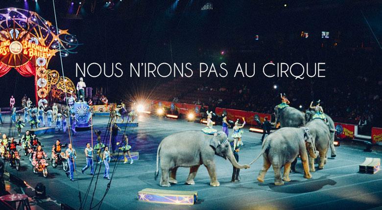 animaux du cirque
