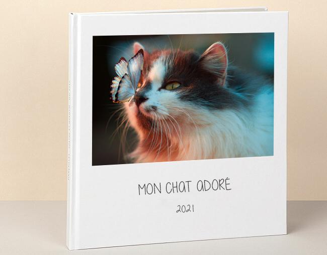 Album photo animal